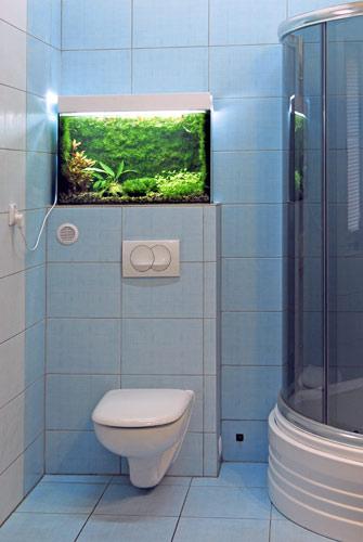 Akwarium w ³azience. W toaletach publicznych s± tam specjalny reklamy.