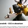 Консультативный обновленный CO2 аквариум