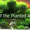 The Art of the Planted Aquarium 2015