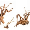 Новый сорт корней: Вилка Древесина